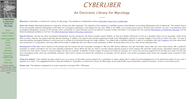 Cybertruffle Website